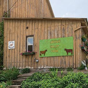 BHF image3 300x300 - Antique Valley Farm