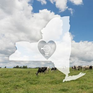 Organic Grass Fed Milk Farm to Table from Byrne Hollow Farm